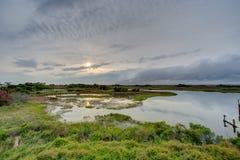 Solider Sonnenuntergang - Grün Lizenzfreie Stockfotos