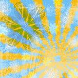 Solig blom- Grunge bakgrund Royaltyfri Fotografi