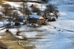 Solig dag av en vinter, på lösa transylvania kullar med Bucegi berg i bakgrund Fotografering för Bildbyråer