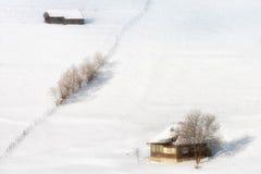 Solig dag av en vinter, på lösa Transylvania kullar romania Royaltyfri Foto