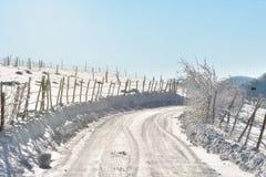 Solig dag av en vinter, på lösa Transylvania kullar romania Arkivbilder