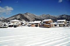 Solig dag av vintern Arkivfoton