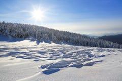 Solig dag för kall vinter Mystiskt hemligt, fantastiskt, värld av berg På gräsmattan som täckas med snö de trevliga träden arkivbild