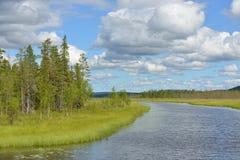 Solig dag för norr flod Royaltyfri Bild