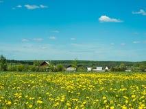 Solig dag för sommar i byn Arkivfoto