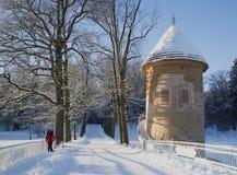 Solig dag för vinter på det gamla tornet Pavlovsk parkerar Royaltyfria Bilder