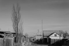 Solig dag i byn, en ensam poppel Arkivfoton