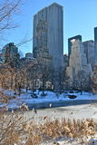Solig dag i Central Park. New York. Royaltyfri Fotografi