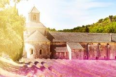 Solig dag i den Provence Senanque abbotskloster Arkivbilder