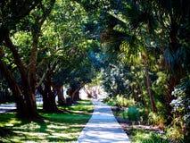 Solig dag i Florida Fotografering för Bildbyråer