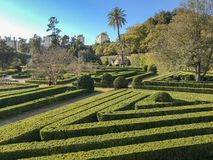 Solig dag i formell trädgård med topiaryväxter, släta linjer, geometrisk form och spår i Lissabon royaltyfri foto