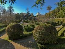 Solig dag i formell tr?dg?rd med topiaryv?xter, sl?ta linjer, geometrisk form och sp?r i Lissabon fotografering för bildbyråer