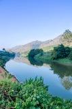 Solig dag på en lugna flod Royaltyfri Foto