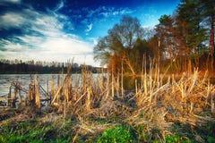Solig dag på en lugna flod i sommar Arkivbilder