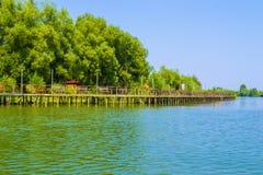 Solig dag på en lugna flod i sommar Lantlig flodlandscap Arkivbilder