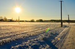 Solig dag på ett snöig fält i Estland royaltyfri foto