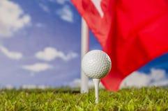 Solig dag på golffält Arkivbilder