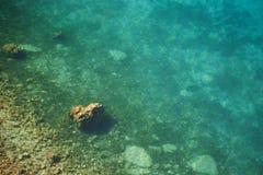 Solig dag på kusten av sjön Ohrid Fotografering för Bildbyråer
