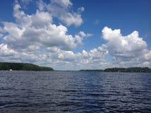 Solig dag på skogsjön royaltyfri bild
