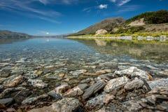Solig dagWanaka lake, södra ö som är nyazeeländsk. royaltyfria bilder
