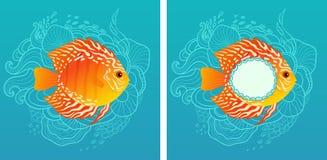 solig fisk Royaltyfria Bilder