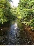 solig flod Arkivbilder
