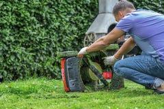 Solig gräsmatta för sommar som och för vårsäsong mejar i trädgården arkivfoto