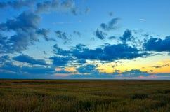 Solig gryning i ett fält Fotografering för Bildbyråer