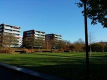 Solig höstdag i Amstelveen Holland Arkivbilder
