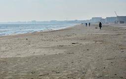 Solig höstmorgon på kusten av Blacket Sea på den Navodari stranden Arkivbilder
