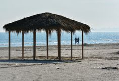 Solig höstmorgon på kusten av Blacket Sea på den Navodari stranden royaltyfri foto