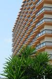 Solig hotellbalkong med palmträd arkivfoton