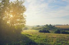 solig liggandesommar Den härliga sikten av gröna kullar, sätter in och betar arkivfoton