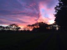 solig morgon Arkivbilder