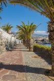 Solig promenad i Alcala Tenerife Royaltyfria Foton