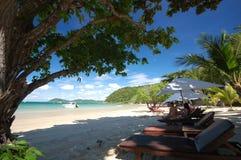 solig strand Royaltyfri Bild