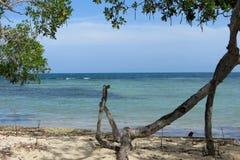 Solig stranddag - Morrocoy nationalpark, i Venezuela Royaltyfria Bilder