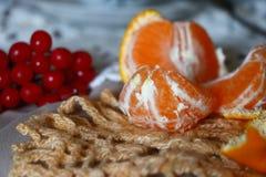 solig tangerin royaltyfria bilder