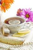 solig tea för biscotticitrondeltagare arkivfoto