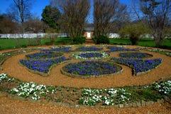 Solig trädgårds- säng Arkivbild