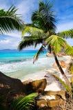 Solig tropisk strand Arkivbild