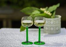 Solig vårdag i trädgården med vitt vin arkivfoton