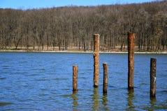 Solig vårdag på sjön royaltyfria foton