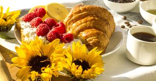 Solig vårfrukost med giffel Royaltyfri Foto