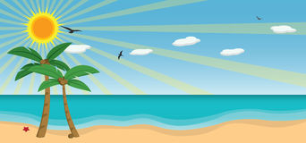 solig vektor för strand Arkivfoto