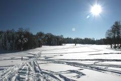 solig vinter för dag arkivfoto