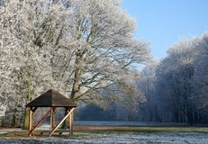solig vinter för dag Arkivbild