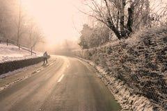 solig vinter för väg arkivbild