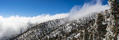 Solig vinterdag med stupad snö och ett hav av vita moln på slingan till Mt San Antonio (Mt Baldy), Los Angeles County, royaltyfri bild