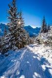 Solig vinterexpedition till bergen Arkivfoton